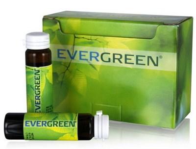 ЭверГрин - EverGreen - фото 4550
